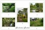 Gooderstone Gardens panel - Shirley Eastwood