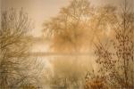 MIST ON THE LAKE - Phil Lenney