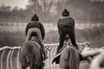 Dan Starling-Galloping down the Gallops